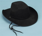 Deluxe Felt Western Hat with Feather