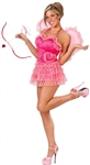 Cupids Kiss Adult Sexy Womens Costume