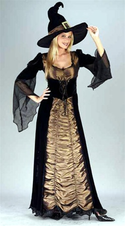 Womens Taffeta Coffin Witch Costume