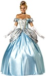Beautiful Cinderella Costume