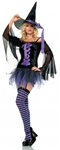Sexy Purple Witch Adult Costume