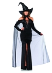Sultry Sorceress Witch Costume