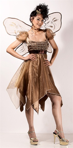 Sexy Copper Fairy Costume