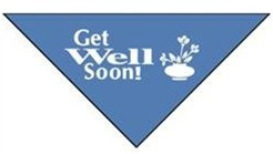 Perfect Petzzz Get Well Soon Bandana - Accessory