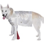 Rock Superstar Dog Costume