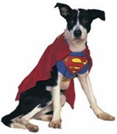 Dog Superman Costume