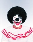 Black Clown Adult Wig