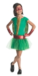 Teenage Mutant Ninja Turtles Raphael Tutu Costume