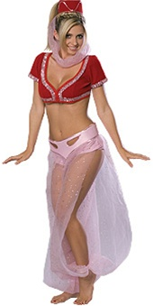 Adult I Dream Of Jeannie Costume