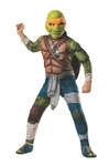 Deluxe Teenage Mutant Ninja Turtles Michelangelo Child Costume