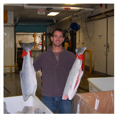 King Salmon Frozen At Sea from Alaskan Pride Seafoods