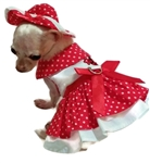 Little Lady Dog Harness Dress 4 Piece Set