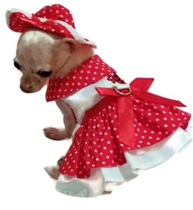 Dog Harness Dress