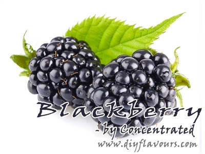 Blackberry Concentrated Flavor
