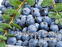 Blueberry (Wild) by TFA or TPA