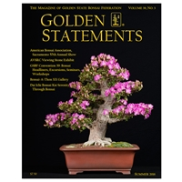 Golden Statements Summer 2016 - Single Issue - FREE DIGITAL DOWNLOAD