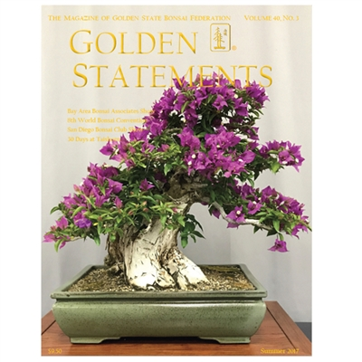 Golden Statements Summer 2017 - Single Issue - FREE DIGITAL DOWNLOAD