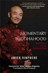 Momentary Buddhahood: Mindfulness and the Vajrayana Path by Anyen Rinpoche