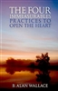 Four Immeasurables: Practices to Open the Heart by B. Alan Wallace
