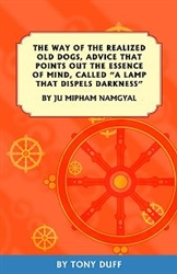 "The Way of the Realized Old Dogs: Advice That Points Out the Essence of Mind, Called ""A Lamp That Dispels Darkness"" by Ju Mipham Namgyal"