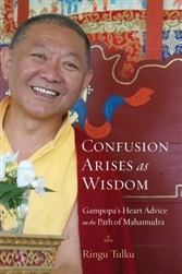 Confusion Arises as Wisdom, by Ringu Tulku