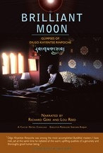 Brilliant Moon, DVD
