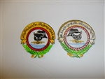 b0595 US-Iraq War Desert Storm Desert Shield Iraqi Fighter Squadron patch IR18A