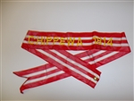 wst19 US Army Streamer War of 1812 Chippewa 1814