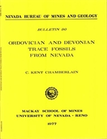 Ordovician and Devonian trace fossils from Nevada