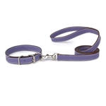 Casual Canine Leather Leash  Ultra Violet 6 Feet long 1 inch wide