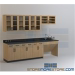 Laboratory Counter Cabinets with Doors Lab Furniture for Medical Research