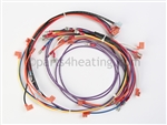 Pentair 473168 Wire harness electrical
