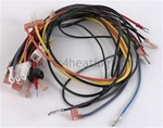 LAARS R2028002 Wire Harness, JVS, Two-Stage