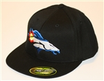 Colorado Denver Broncos Flex Fit Cap by Brawlin
