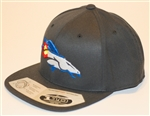 Colorado Denver Broncos Flex Fit Snap Back by Brawlin