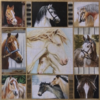 1044 Horse Collage