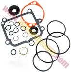 2513018 - Genuine Hydro Gear Seal Kit for PL Pumps