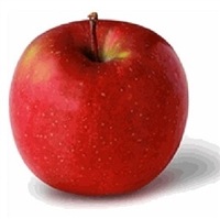 Fuji Apples are a good source of fiber and vitamin C. Fuji Apples also contain polyphenols, which have numerous health benefits. Fuji Apples aid weight loss in several ways. Fuji Apples are particularly filling due to their high fiber content.