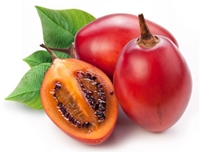 Tamarillo Fruit is relative of the potato, tomato, eggplant and capsicum pepper. The tree tomato is native to Central and South America. Tamarillo Fruit is a source of Vitamin A, B6 and C.