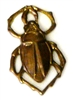 1pc antique brass charm small scarab beetle