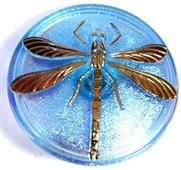 1pc czech glass button aquamarine ab dragonfly