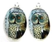2pc 30mm Oval Vintage Charm Set Owl