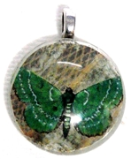 1pc 25mm Vintage Glass Round Pendant Green Butterfly Silver Bail