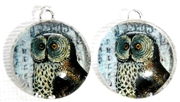 2pc 18mm Glass Round Charm Set Owl