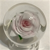 Rick Ayotte Mini Pink Rose