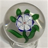 Antique Baccarat Anemone