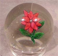 New England Glass Co. Poinsettia