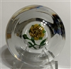 Rare Antique St. Louis Rose Paperweight