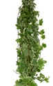 Wholesale Bulk Discount Wholesale Ivy - Variegated Greenery