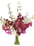 Online Wholesale Bulk Discount Cut Dendrobium Orchid - Assorted